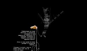 2008ChrysalideHumaine_accueil